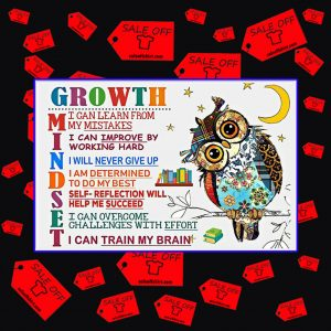 Owl Growth mindset I can learn from my mistakes poster