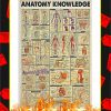 Anatomy Knowledge Poster