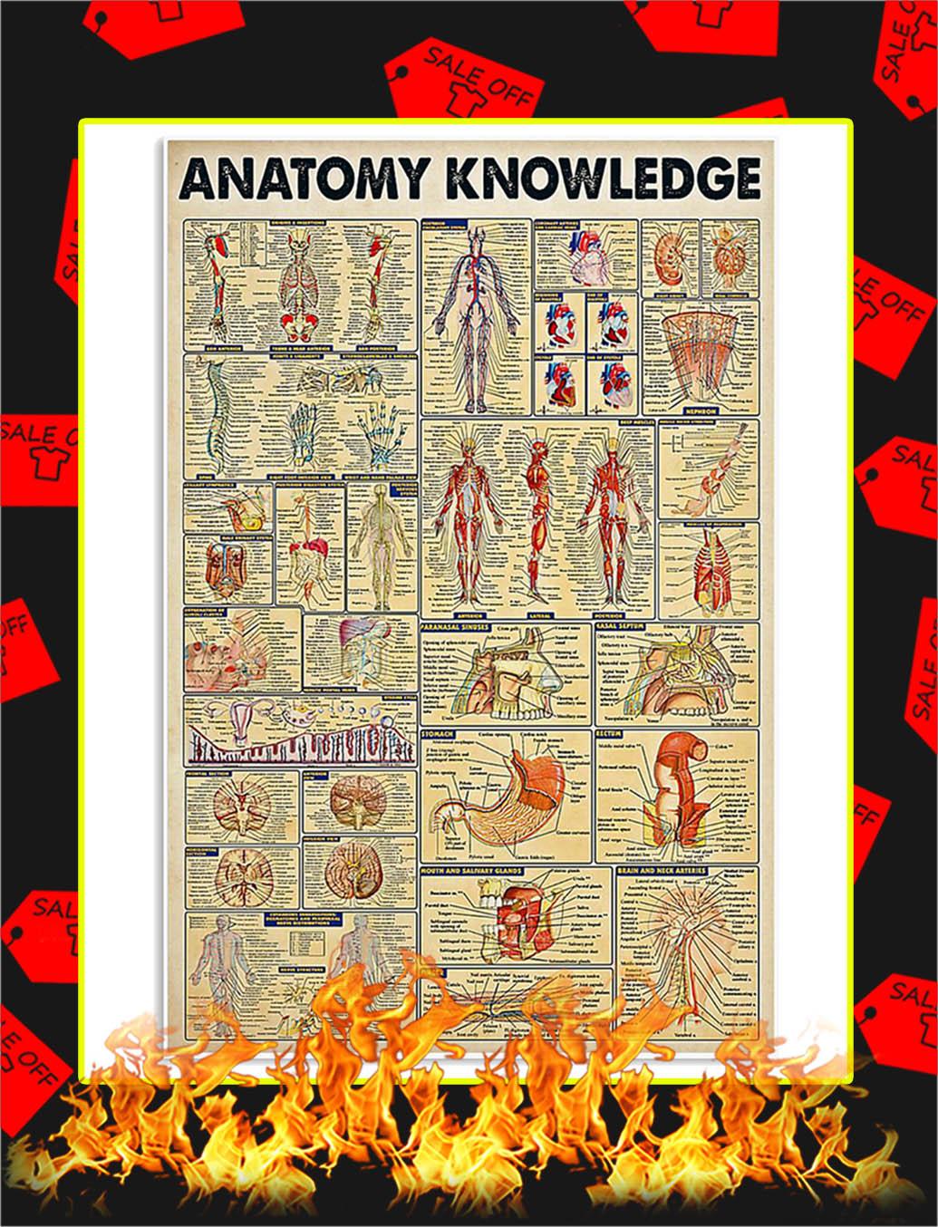 Anatomy Knowledge Poster - 24x36