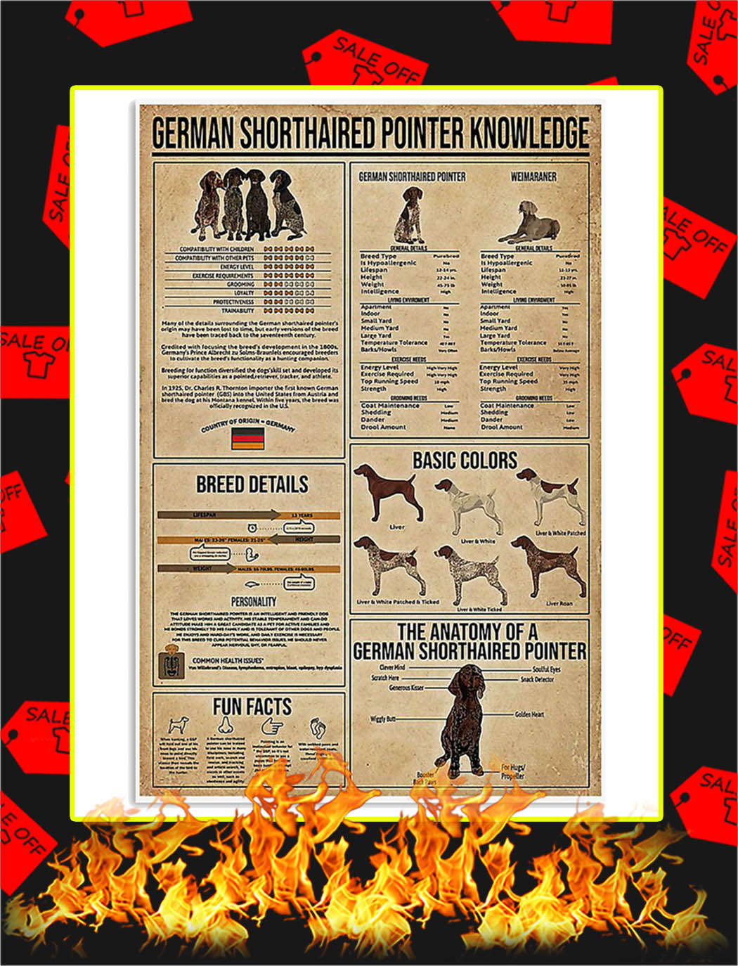German Shorthaired Pointer Knowledge Poster - 24x36