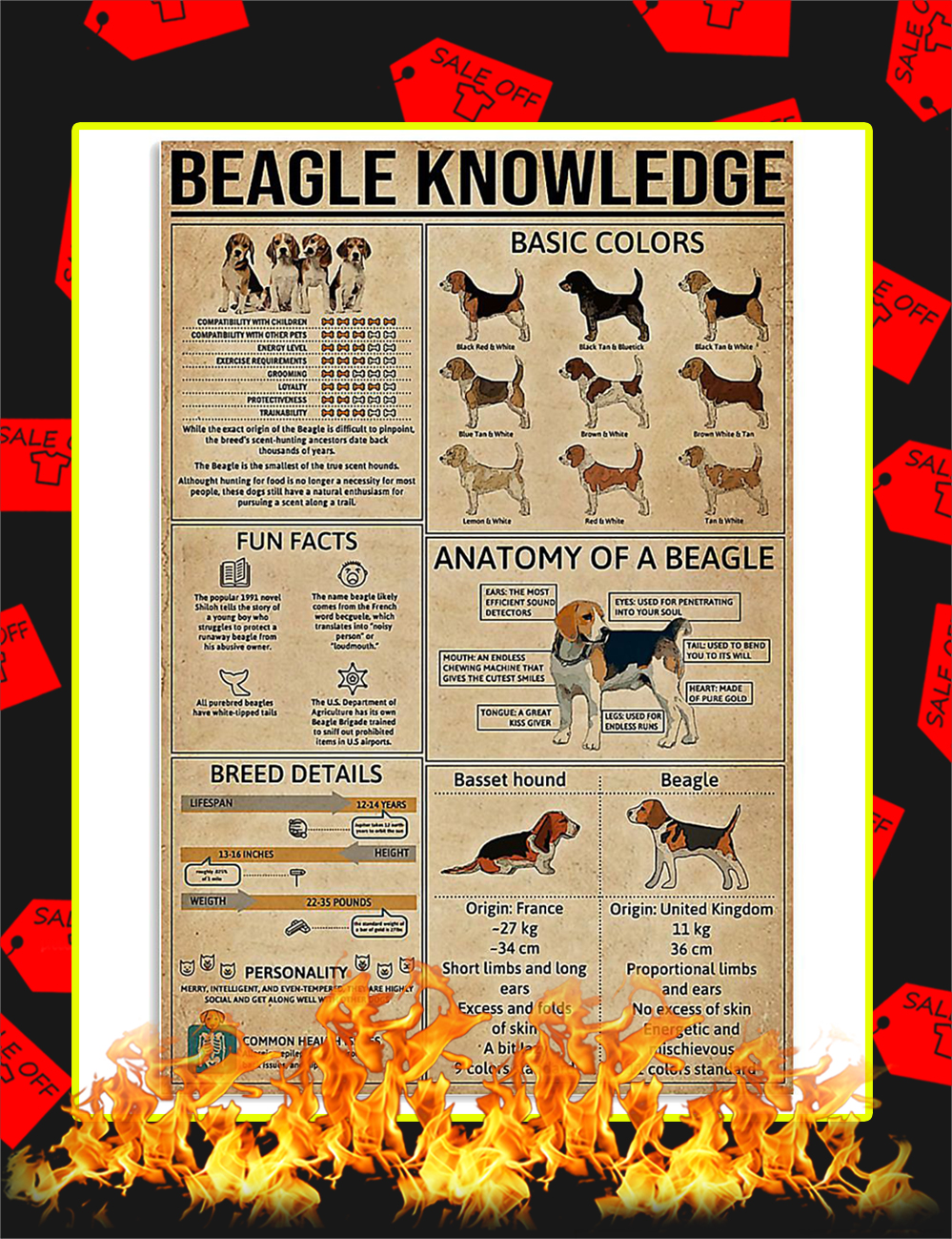 Beagle Knowledge Poster -16x24
