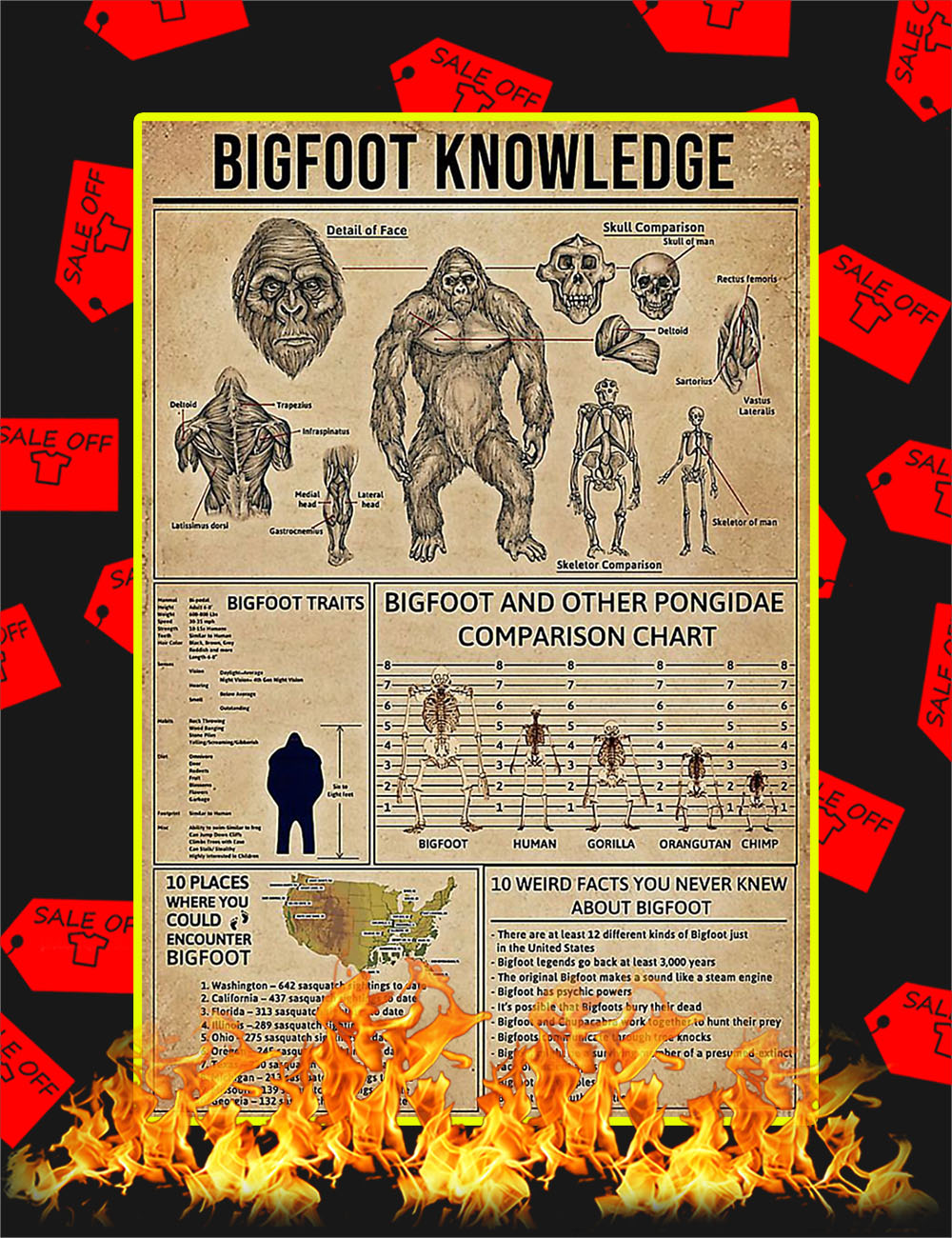 Bigfoot Knowledge Poster - 24x36