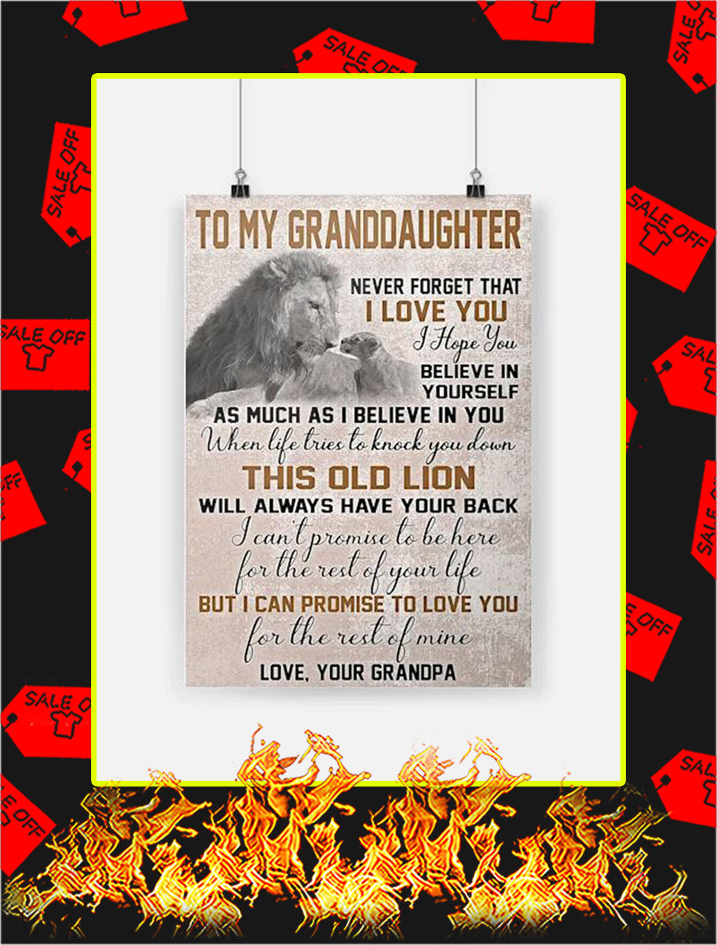 Lion To My Granddaughter Poster - A3