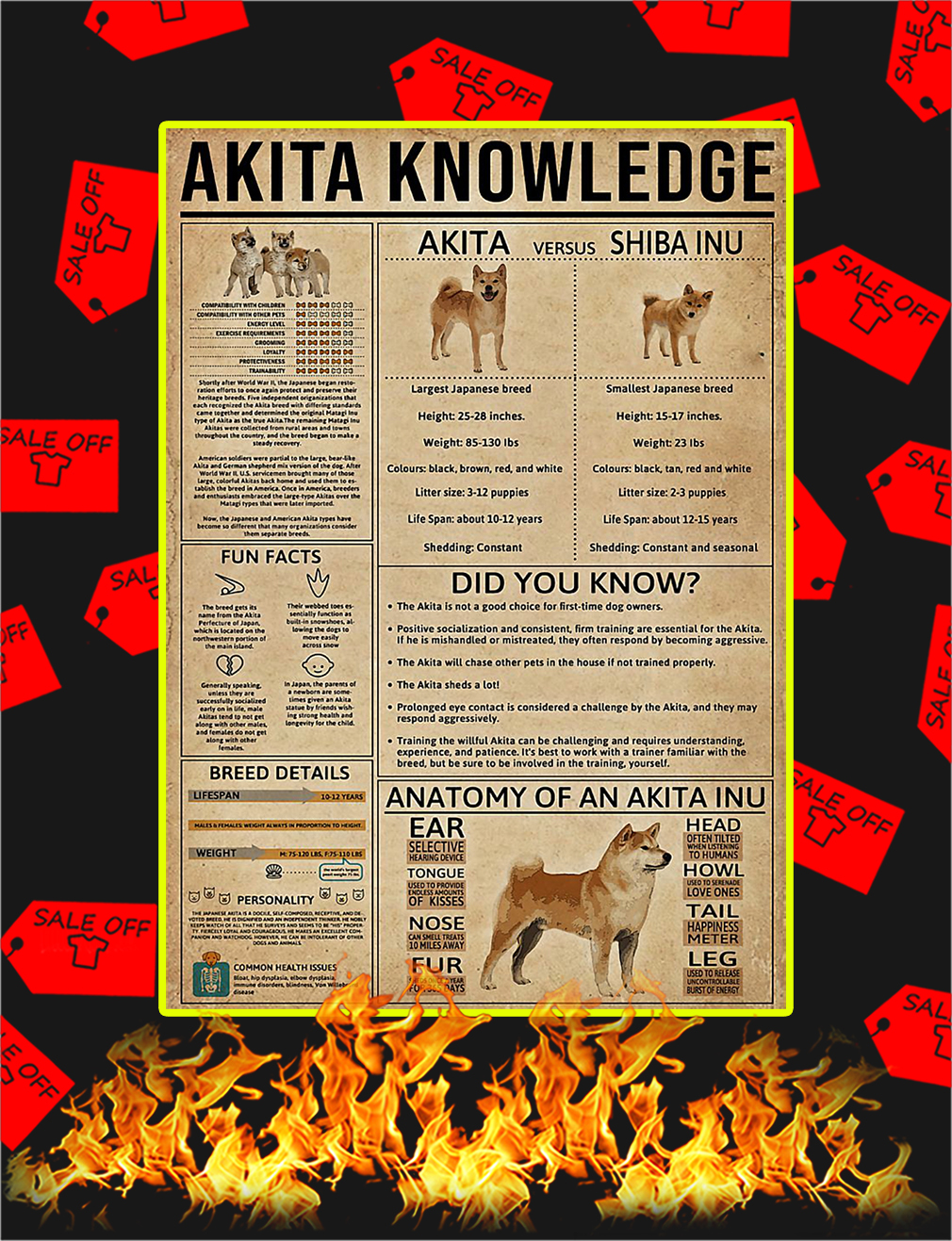Akita Knowledge Poster - A4