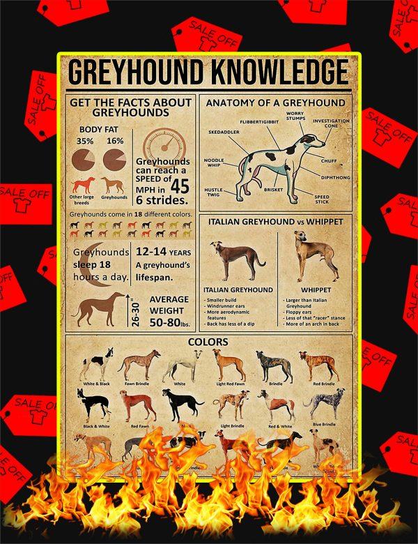 Greyhound Knowledge Poster