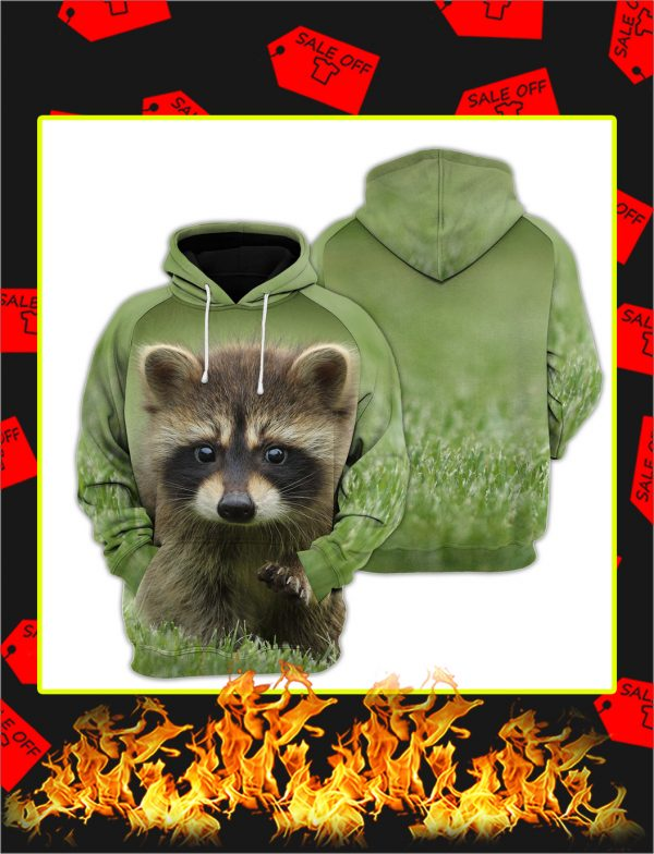 Raccoon 3d All Over Printed hoodie