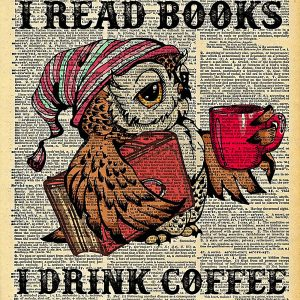 Owl That's what I do I read books drink coffee poster