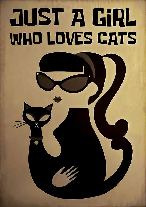 Just a girl who love cats poster