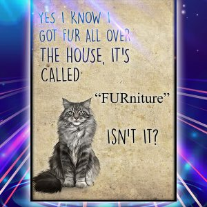 Cat yes i know i got fur all over the house it's called furniture isn't it poster