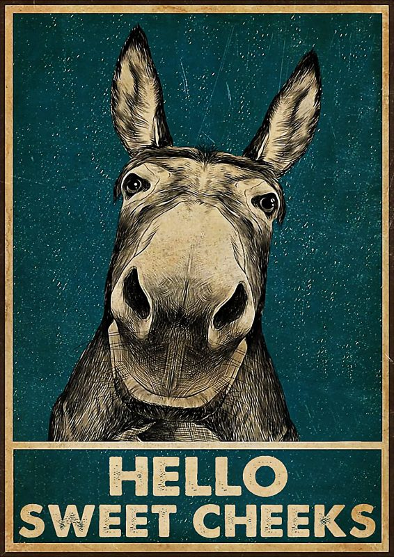 Donkey hello sweet cheeks poster